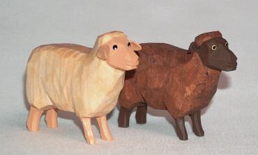 Schaf-stehend-Kopf